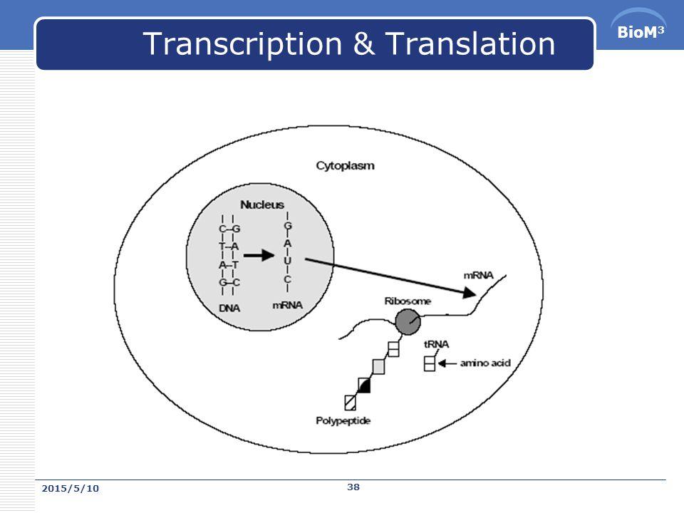 BioM 3 反密碼 (anti-codon)  是位在 tRNA 上, tRNA 上反密碼決定 tRNA 所要攜帶的氨 基酸,反密碼會與 mRNA 上的密碼配對。 2015/5/10 37
