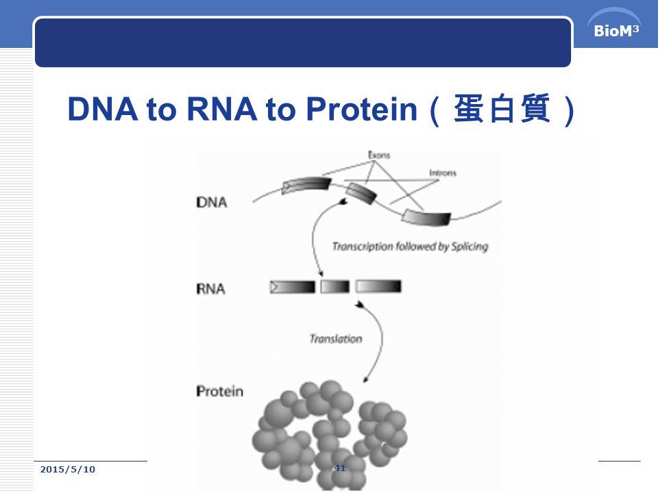 BioM 3 蛋白質是依照基因的密碼來合成 DNA 是遺傳物質, DNA 上面三個相鄰 的鹼基就可以組成 一個密碼,基因要 做蛋白質的時候, 是先將 DNA 的密碼 轉錄成 RNA , RNA 離開細胞核進 入細胞質中,與核 糖體結合,就可以 依 RNA 上的密碼合 成蛋白質。 2015/5/10 40