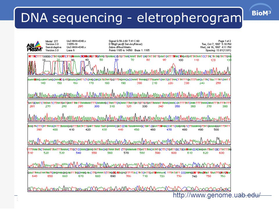 BioM 3 DNA sequencing 2015/5/10 74  The DNA sequencing process  DNA sample preparation  Electrophoresis  Processing  Processing the eletropherogram data to identify the DNA sequence  Conditioning the signal and increasing S/N ratio  Identifying the underlying DNA seqence.