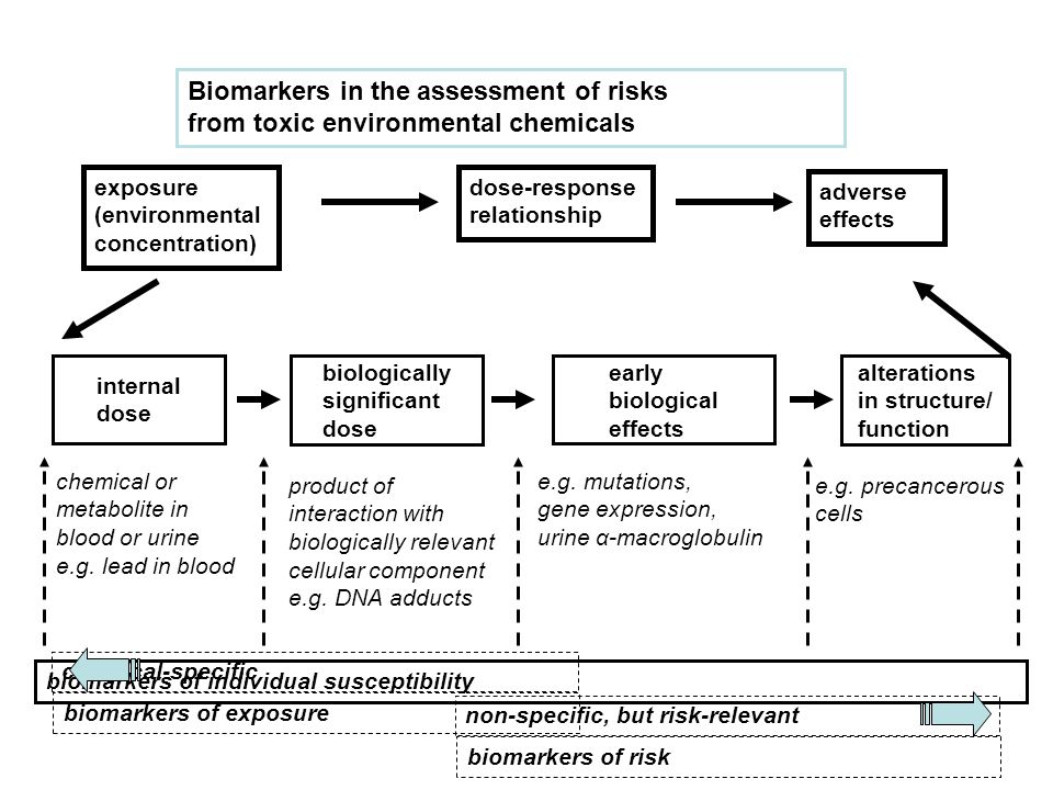 exposure (environmental concentration) dose-response relationship Biomarkers in the assessment of risks from toxic environmental chemicals adverse effects internal dose biologically significant dose alterations in structure/ function early biological effects chemical or metabolite in blood or urine e.g.