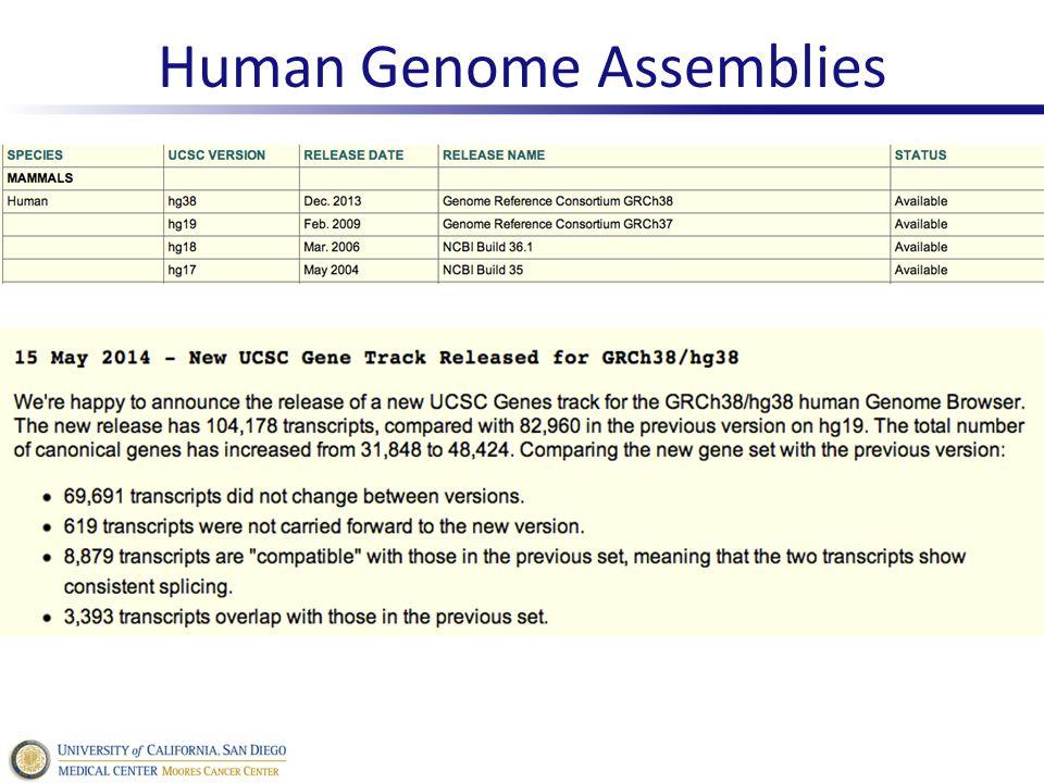 Human Genome Assemblies