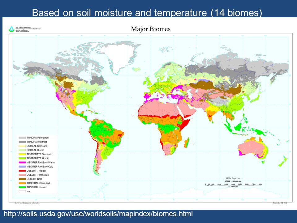 http://soils.usda.gov/use/worldsoils/mapindex/biomes.html Based on soil moisture and temperature (14 biomes)