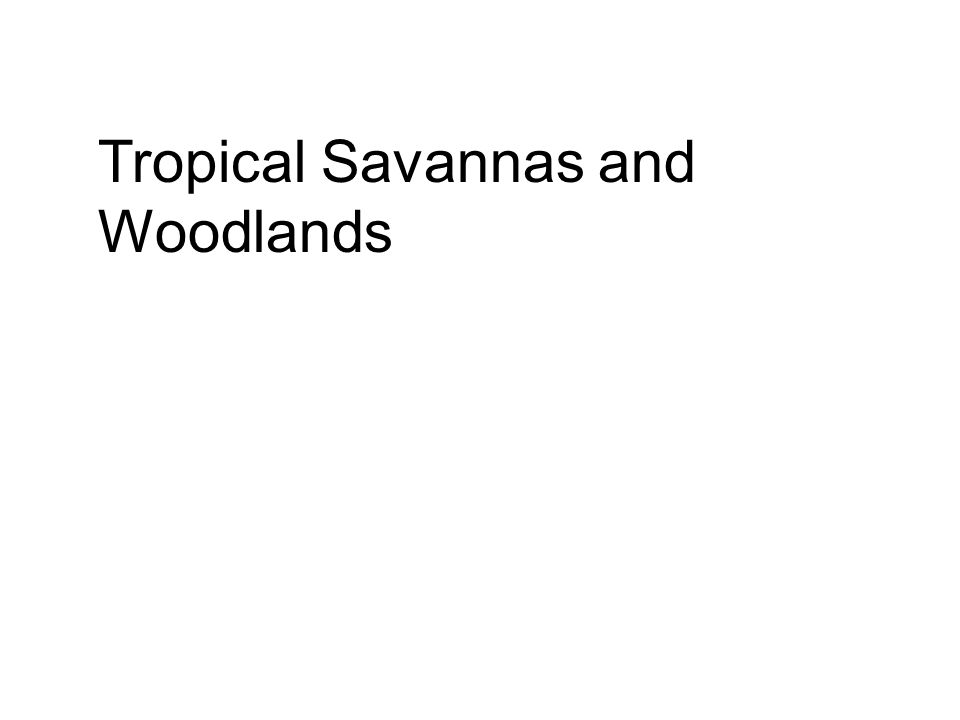 Tropical Savannas and Woodlands