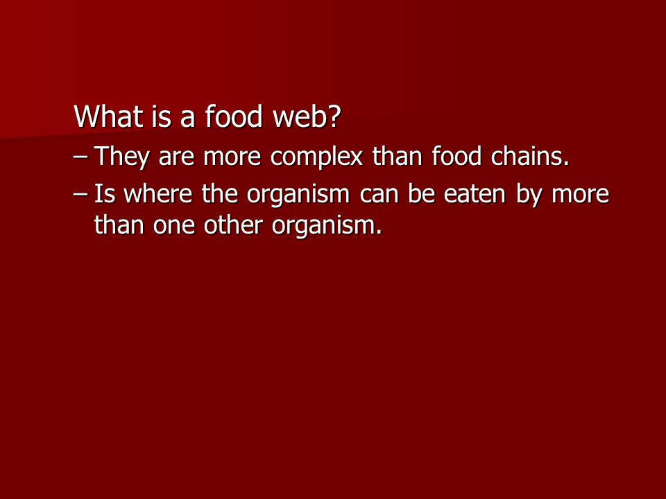 What is a food web. –They are more complex than food chains.