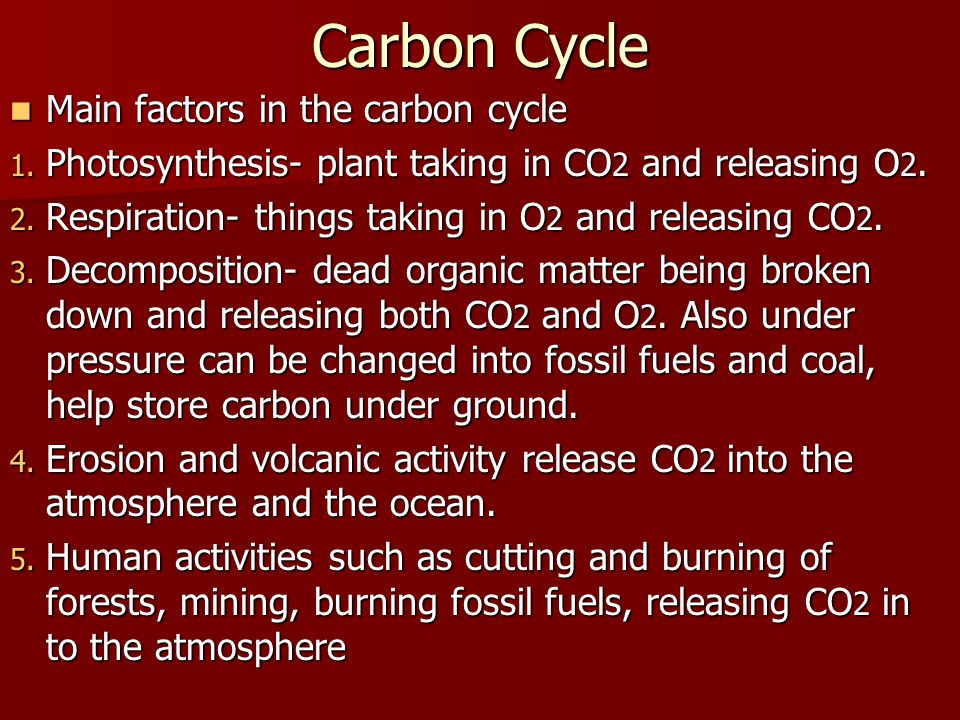 Carbon Cycle Main factors in the carbon cycle Main factors in the carbon cycle 1. Photosynthesis- plant taking in CO 2 and releasing O 2. 2. Respirati