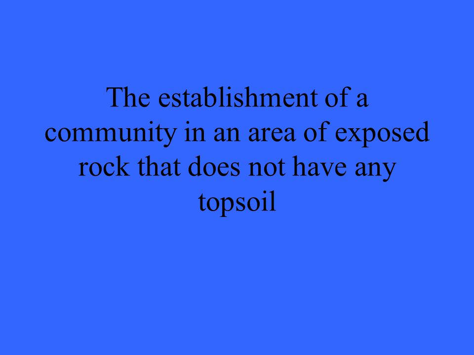 The establishment of a community in an area of exposed rock that does not have any topsoil