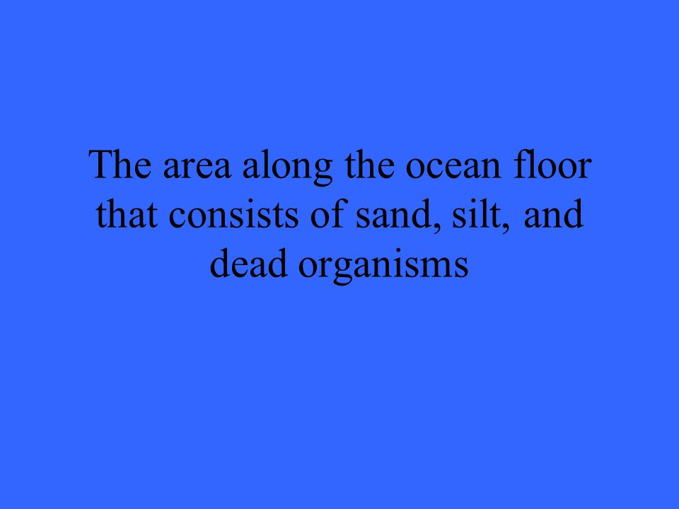 The area along the ocean floor that consists of sand, silt, and dead organisms