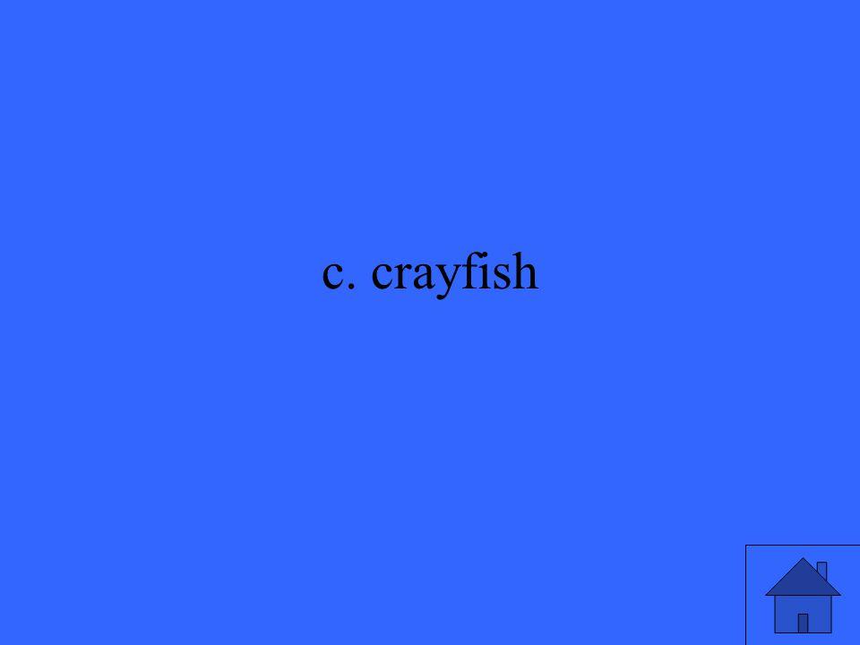 c. crayfish