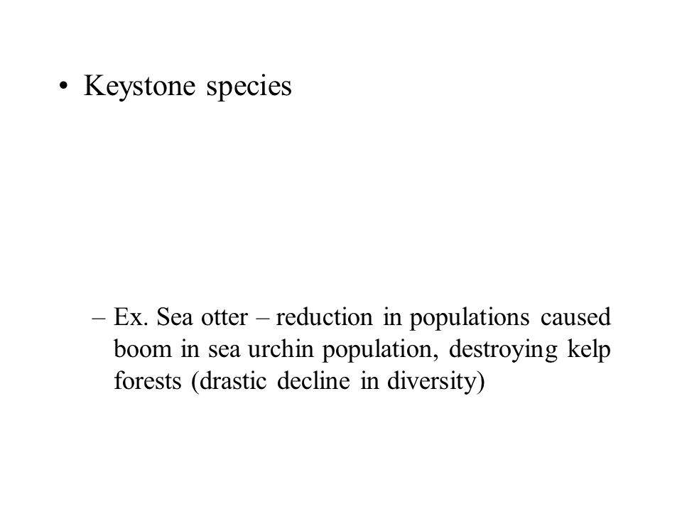 Keystone species –Ex. Sea otter – reduction in populations caused boom in sea urchin population, destroying kelp forests (drastic decline in diversity