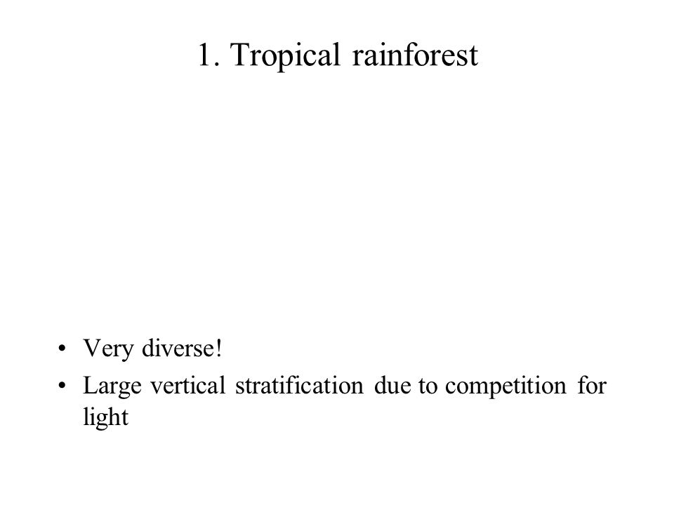 1. Tropical rainforest Very diverse! Large vertical stratification due to competition for light