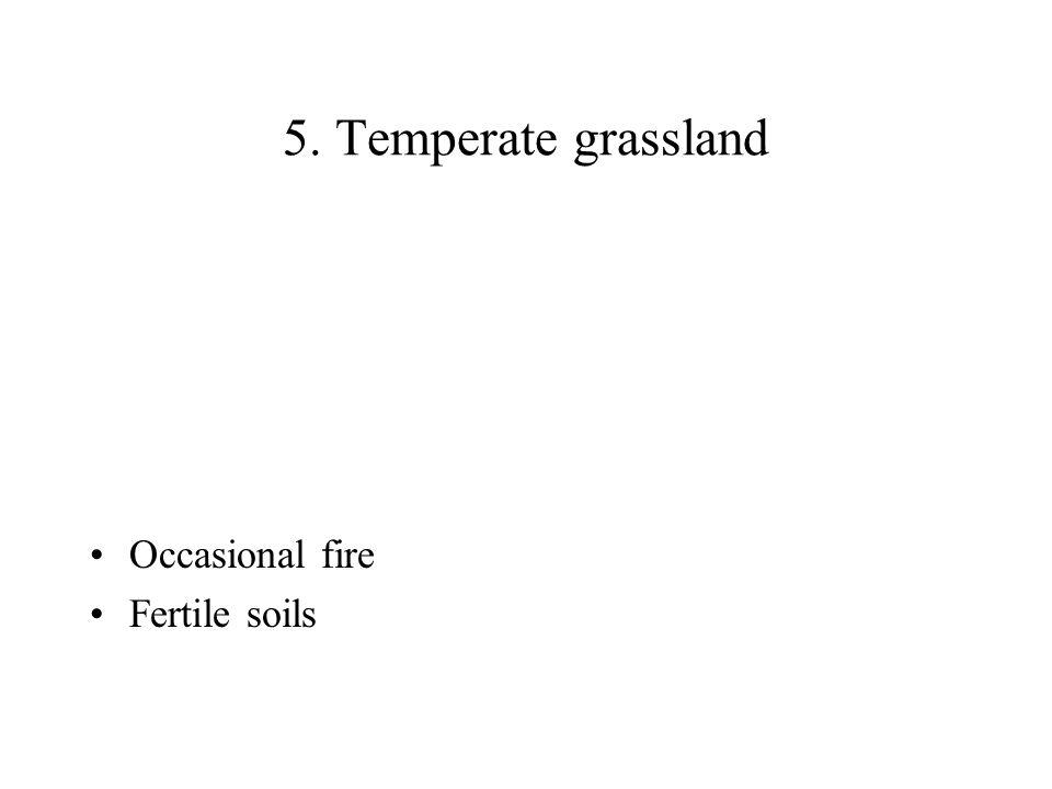 5. Temperate grassland Occasional fire Fertile soils