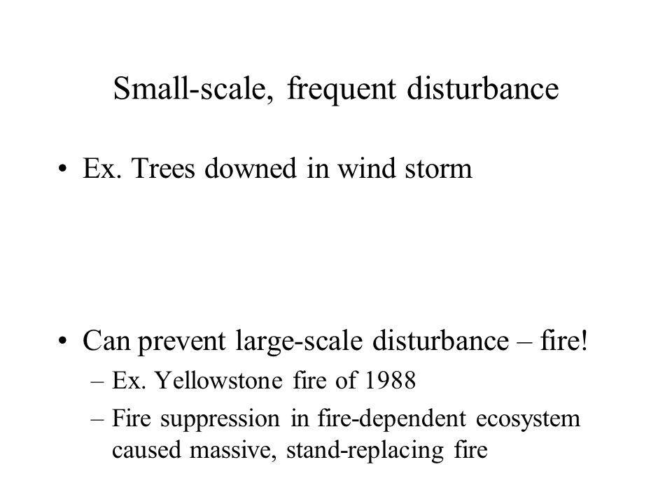 Small-scale, frequent disturbance Ex. Trees downed in wind storm Can prevent large-scale disturbance – fire! –Ex. Yellowstone fire of 1988 –Fire suppr