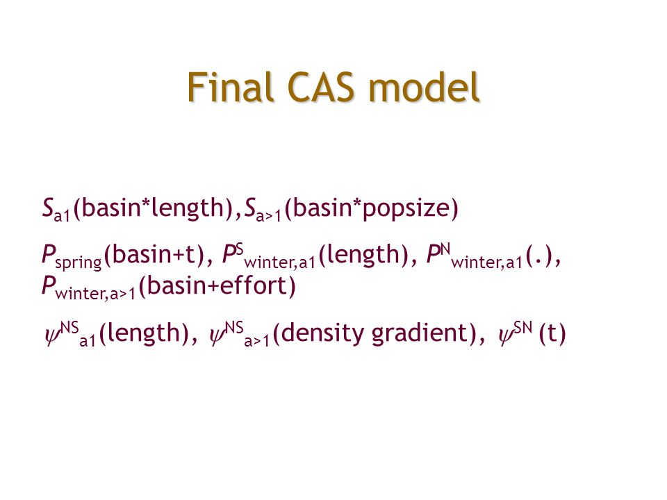 Final CAS model S a1 (basin*length),S a>1 (basin*popsize) P spring (basin+t), P S winter,a1 (length), P N winter,a1 (.), P winter,a>1 (basin+effort) 