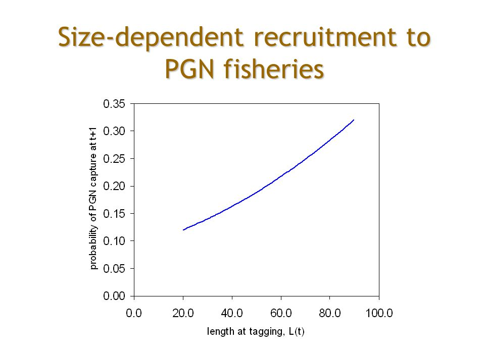 Size-dependent recruitment to PGN fisheries