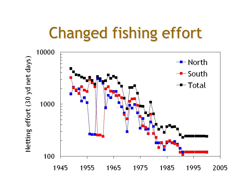 Changed fishing effort