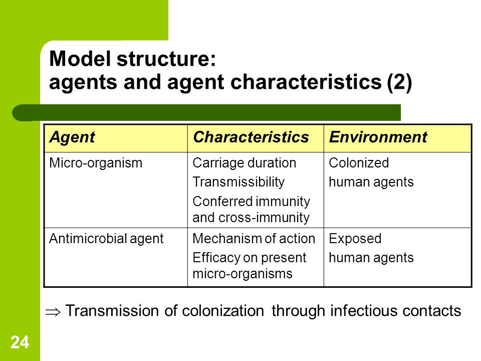 24 Model structure: agents and agent characteristics (2) AgentCharacteristicsEnvironment Micro-organismCarriage duration Transmissibility Conferred immunity and cross-immunity Colonized human agents Antimicrobial agentMechanism of action Efficacy on present micro-organisms Exposed human agents  Transmission of colonization through infectious contacts