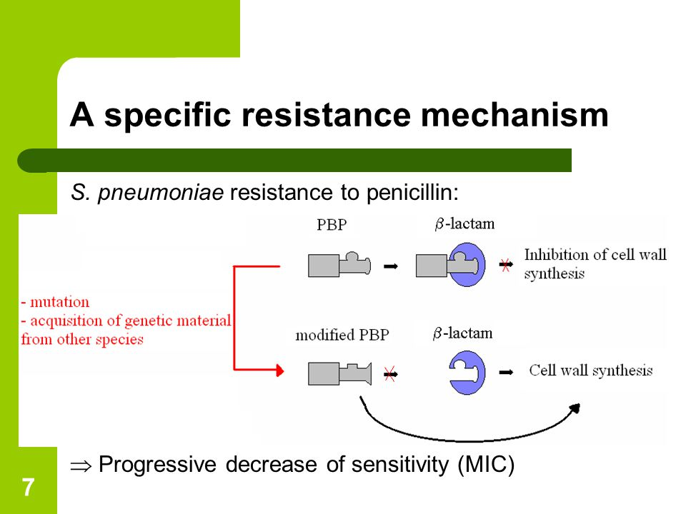 8 A specific model Objective = combining two levels for pneumococcal resistance selection: – Intra-individual evolution of strains  reproducing the resistance mechanism – Inter-individual transmission of strains Model characteristics: – Compartmental deterministic model (partial differential equations) – Progressive increase of resistance levels  Colonized compartments structured by MIC (continuous)