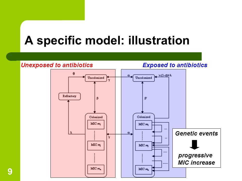 9 A specific model: illustration Unexposed to antibioticsExposed to antibiotics Genetic events progressive MIC increase