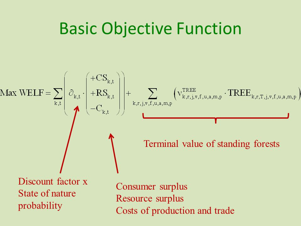 Basic Objective Function Terminal value of standing forests Discount factor x State of nature probability Consumer surplus Resource surplus Costs of production and trade
