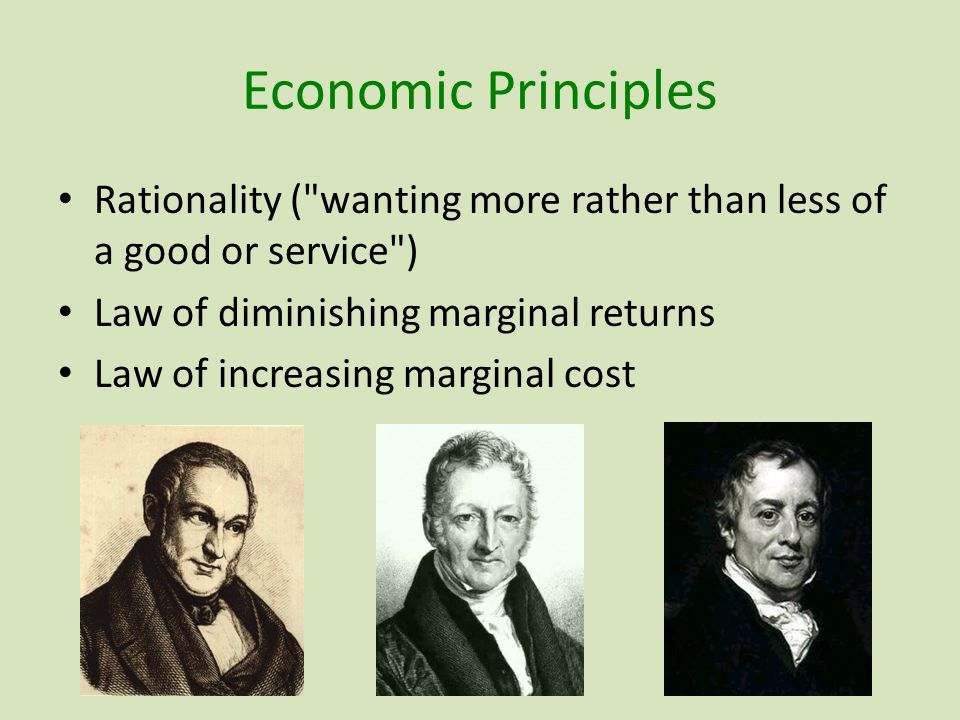 Economic Principles Rationality ( wanting more rather than less of a good or service ) Law of diminishing marginal returns Law of increasing marginal cost