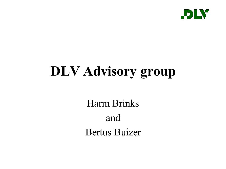 DLV Advisory group Harm Brinks and Bertus Buizer