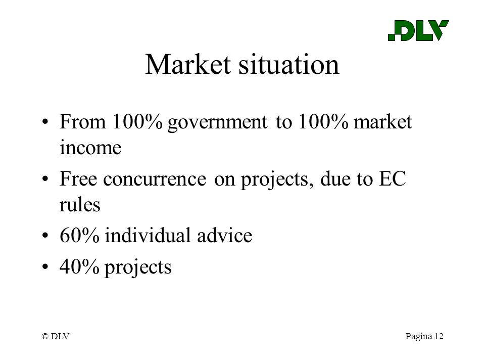 © DLVPagina 12 Market situation From 100% government to 100% market income Free concurrence on projects, due to EC rules 60% individual advice 40% pro