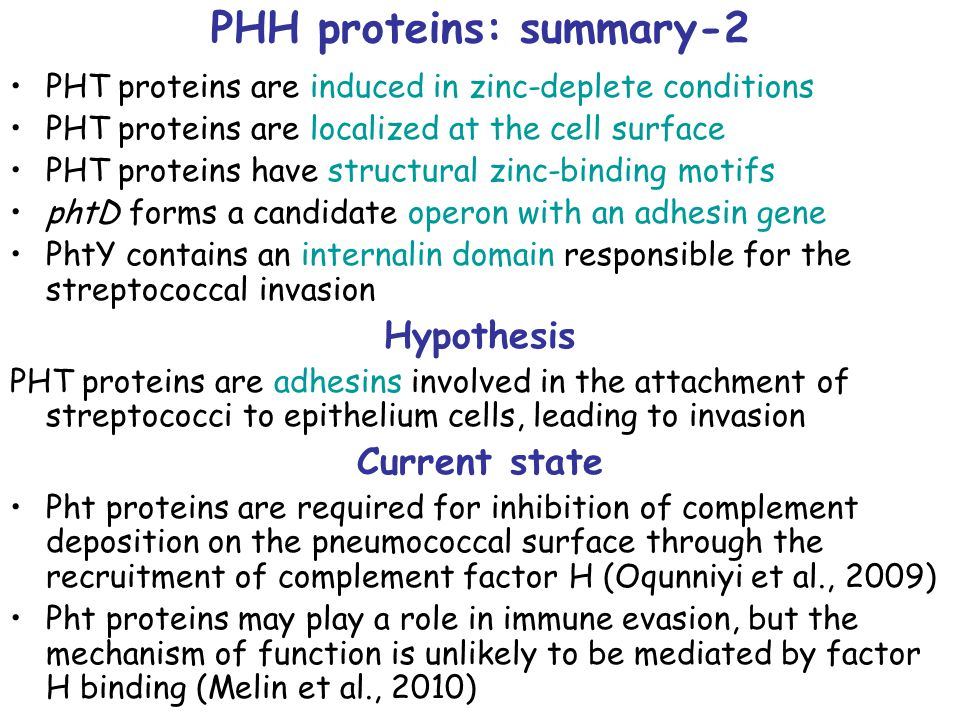 PHH proteins: summary-2 PHT proteins are induced in zinc-deplete conditions PHT proteins are localized at the cell surface PHT proteins have structural zinc-binding motifs phtD forms a candidate operon with an adhesin gene PhtY contains an internalin domain responsible for the streptococcal invasion Hypothesis PHT proteins are adhesins involved in the attachment of streptococci to epithelium cells, leading to invasion Current state Pht proteins are required for inhibition of complement deposition on the pneumococcal surface through the recruitment of complement factor H (Oqunniyi et al., 2009) Pht proteins may play a role in immune evasion, but the mechanism of function is unlikely to be mediated by factor H binding (Melin et al., 2010)