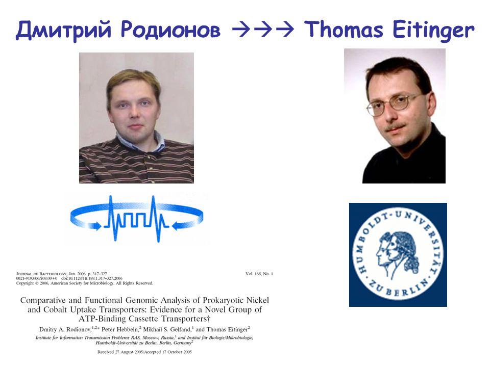 Дмитрий Родионов  Thomas Eitinger