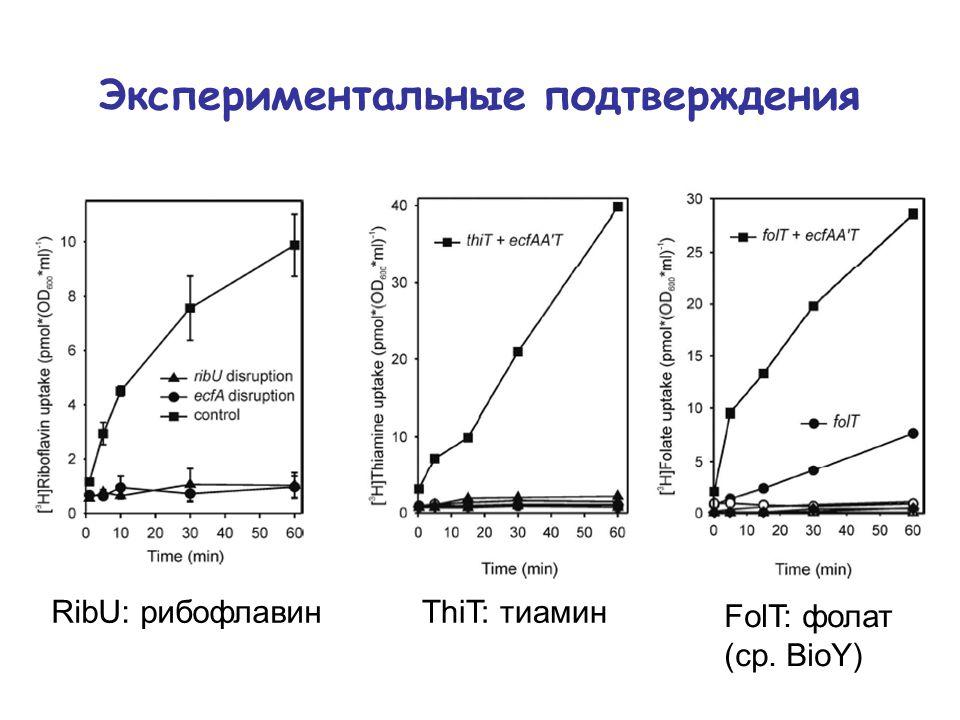 Экспериментальные подтверждения RibU: рибофлавинThiT: тиамин FolT: фолат (ср. BioY)