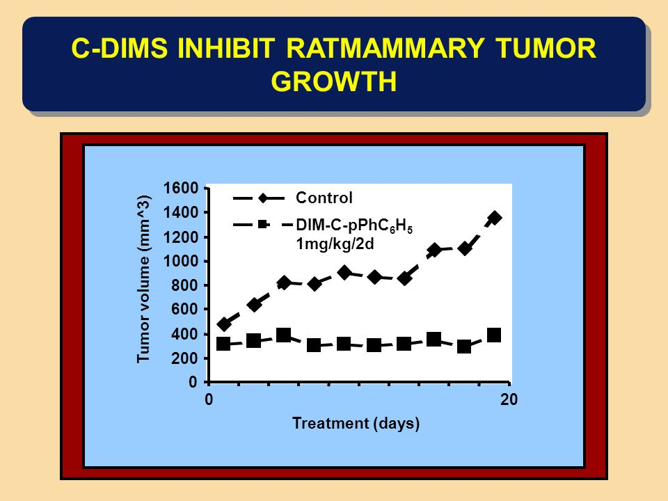 C-DIMS INHIBIT RATMAMMARY TUMOR GROWTH 0 200 400 600 800 1000 1200 1400 1600 20 Treatment (days) Tumor volume (mm^3) Control DIM-C-pPhC 6 H 5 1mg/kg/2
