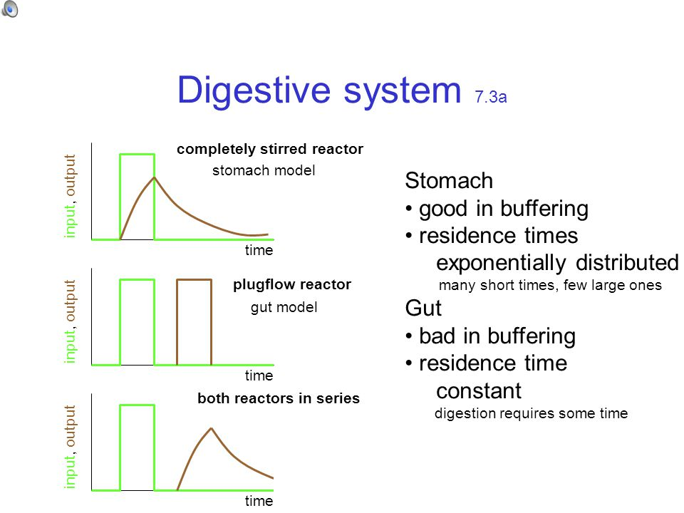 Digestive system 7.3a time input, output time input, output time input, output completely stirred reactor plugflow reactor both reactors in series stomach model gut model Stomach good in buffering residence times exponentially distributed many short times, few large ones Gut bad in buffering residence time constant digestion requires some time