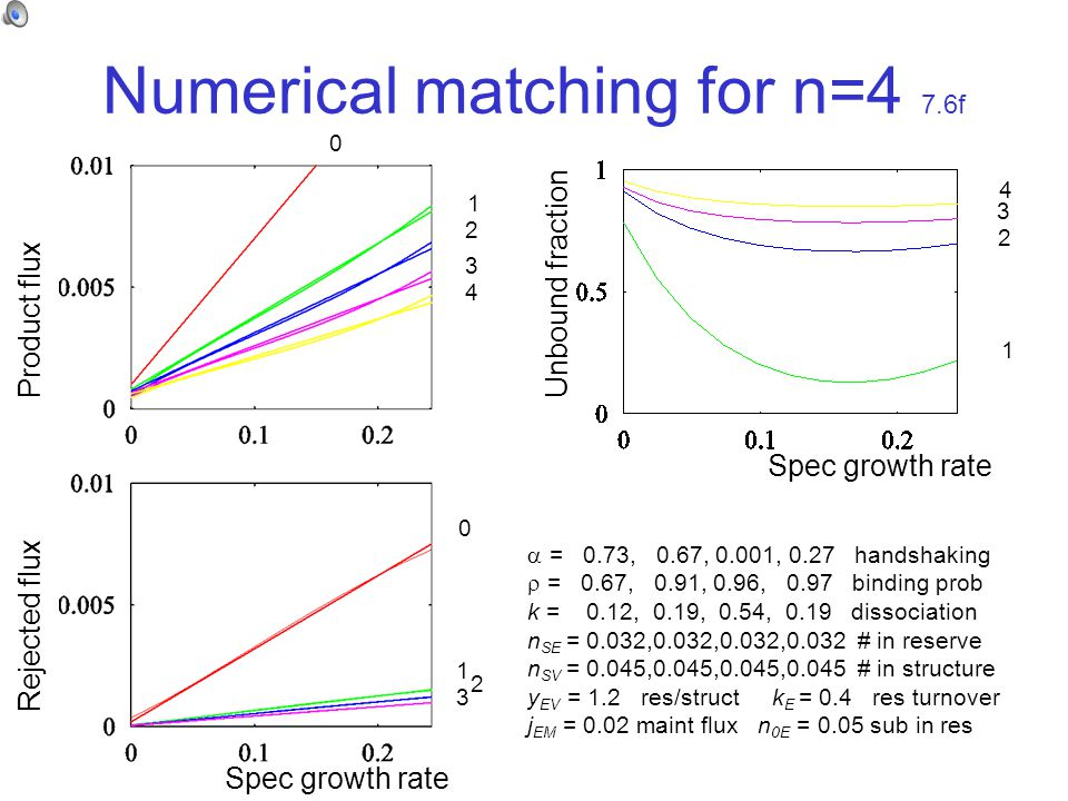 Numerical matching for n=4 7.6f Product flux Rejected flux Unbound fraction  = 0.73, 0.67, 0.001, 0.27 handshaking  = 0.67, 0.91, 0.96, 0.97 binding prob k = 0.12, 0.19, 0.54, 0.19 dissociation n SE = 0.032,0.032,0.032,0.032 # in reserve n SV = 0.045,0.045,0.045,0.045 # in structure y EV = 1.2 res/struct k E = 0.4 res turnover j EM = 0.02 maint flux n 0E = 0.05 sub in res 0 0 1 1 1 2 2 2 3 3 3 4 4 Spec growth rate