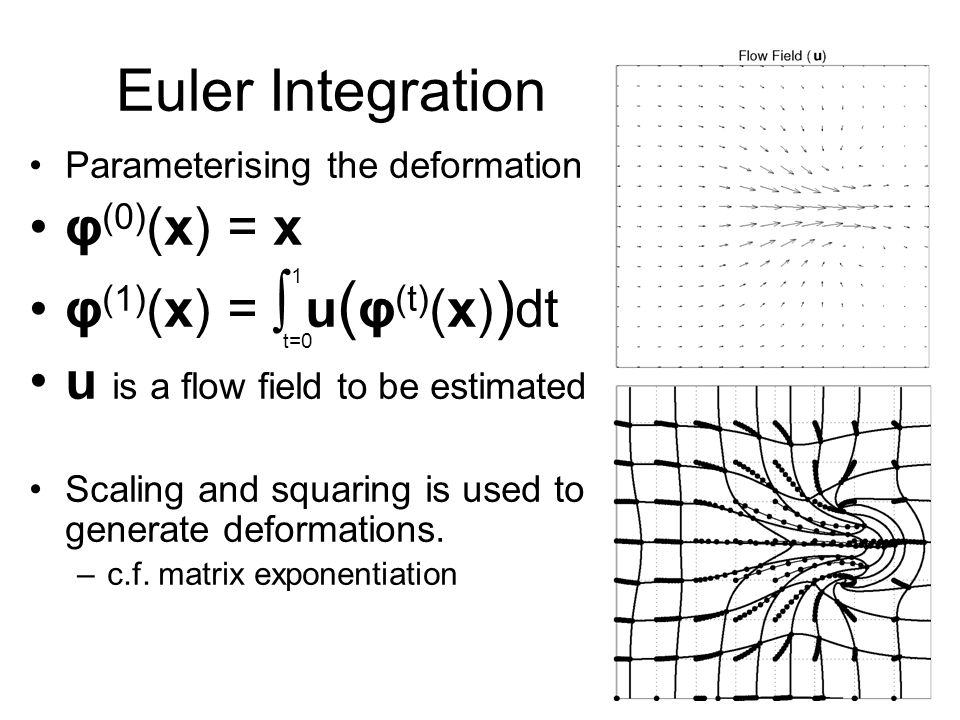 Euler Integration Parameterising the deformation φ (0) (x) = x φ (1) (x) = ∫ u ( φ (t) (x) ) dt u is a flow field to be estimated Scaling and squaring is used to generate deformations.