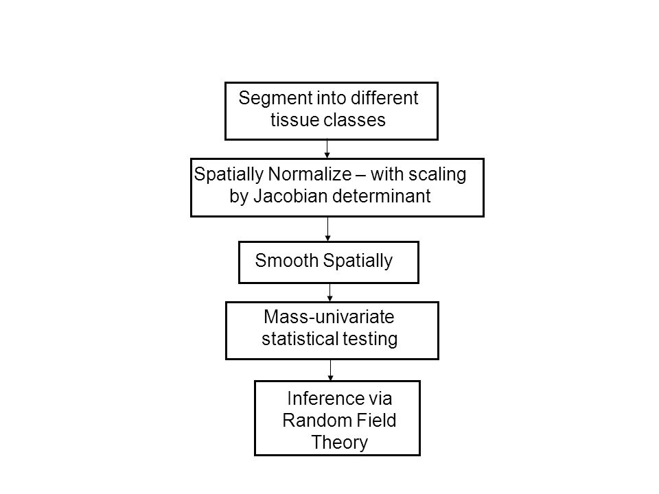 Segment into different tissue classes Spatially Normalize – with scaling by Jacobian determinant Smooth Spatially Mass-univariate statistical testing Inference via Random Field Theory