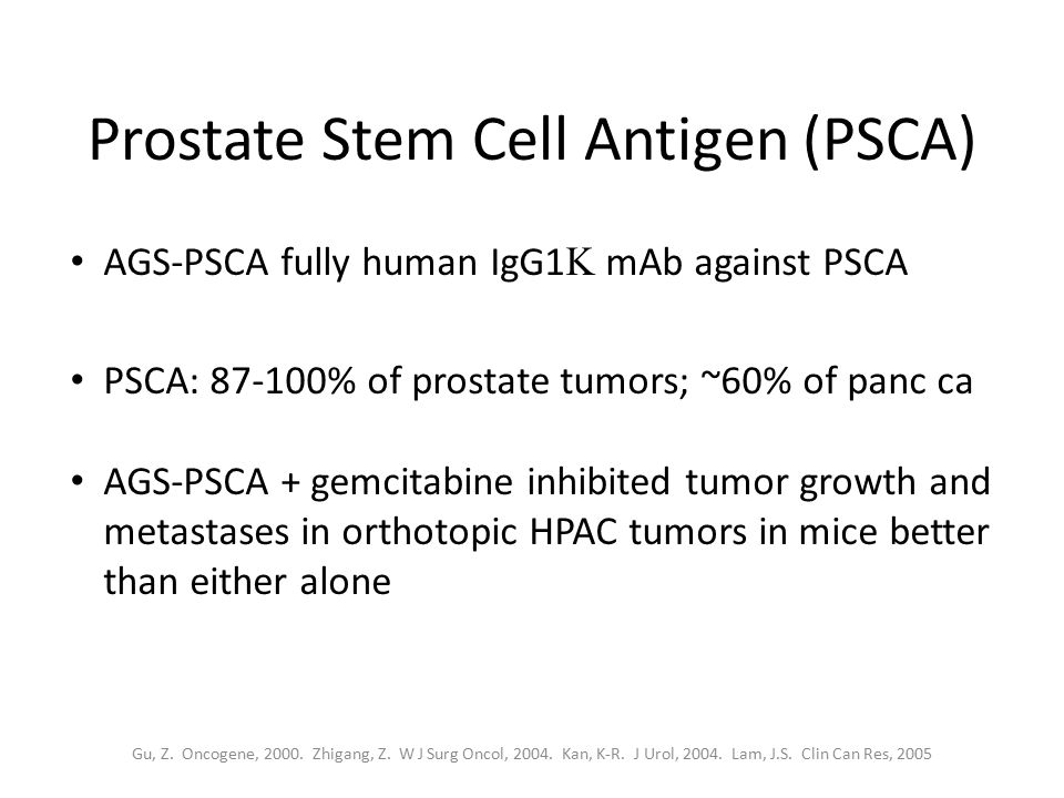 Prostate Stem Cell Antigen (PSCA) AGS-PSCA fully human IgG1  mAb against PSCA PSCA: 87-100% of prostate tumors; ~60% of panc ca AGS-PSCA + gemcitabin