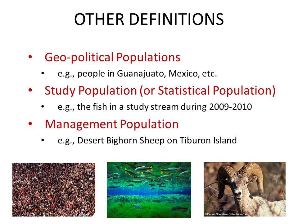 OTHER DEFINITIONS Geo-political Populations e.g., people in Guanajuato, Mexico, etc.