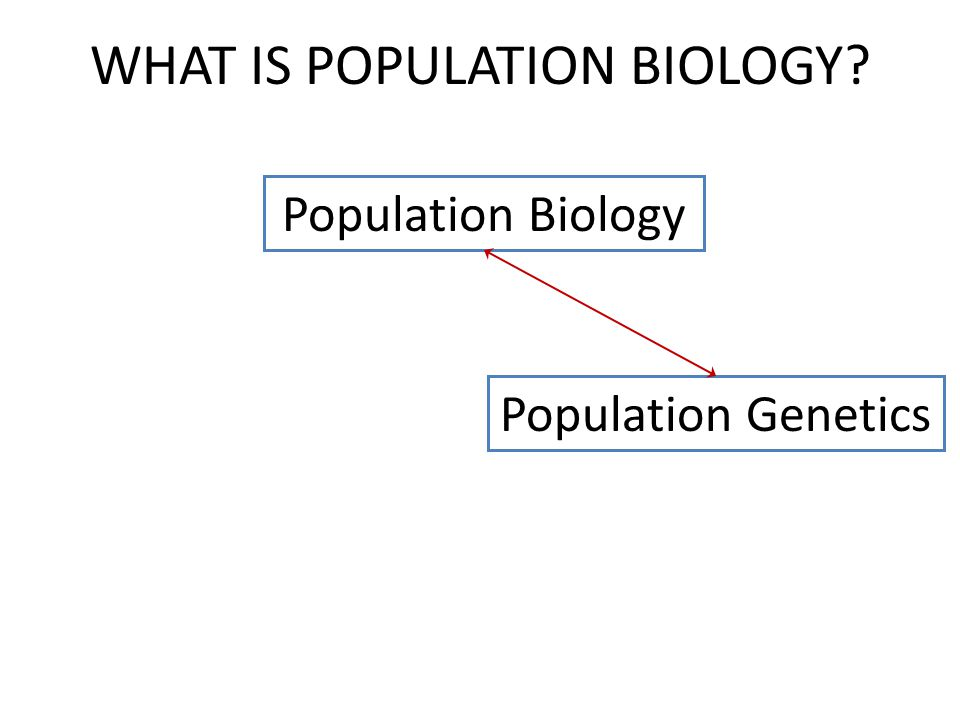 Population Biology Population Genetics WHAT IS POPULATION BIOLOGY?