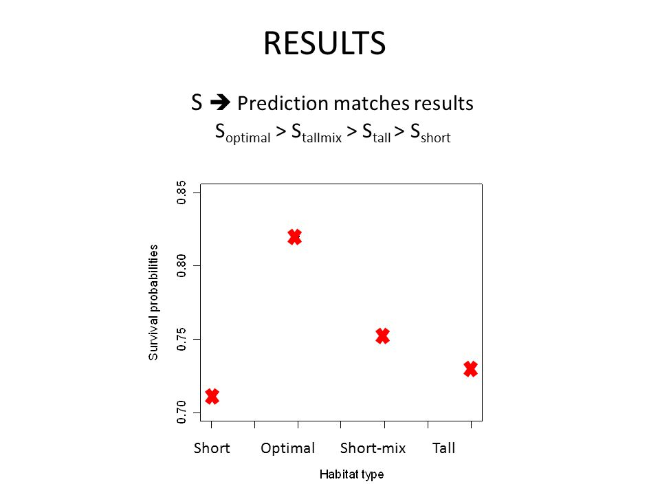 RESULTS S  Prediction matches results S optimal > S tallmix > S tall > S short Short Optimal Short-mix Tall