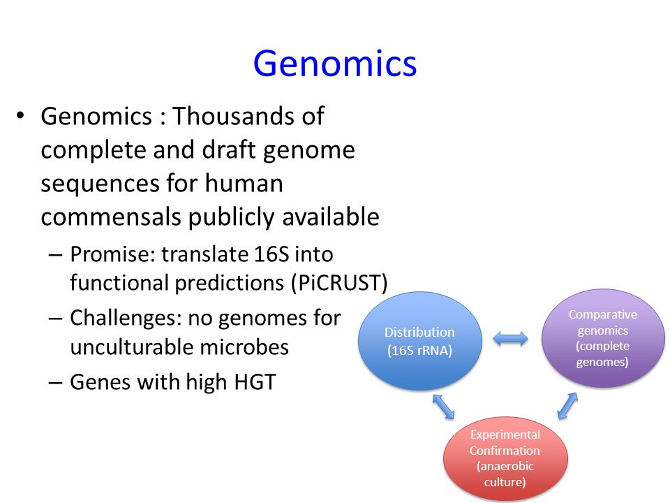 Genomics Genomics : Thousands of complete and draft genome sequences for human commensals publicly available – Promise: translate 16S into functional