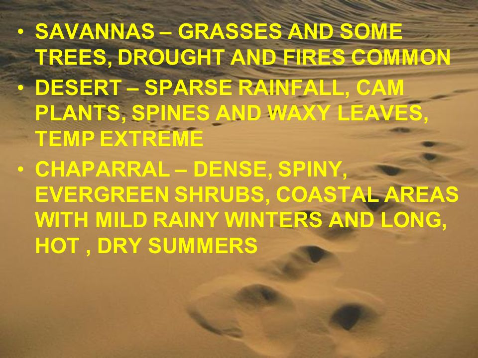 SAVANNAS – GRASSES AND SOME TREES, DROUGHT AND FIRES COMMON DESERT – SPARSE RAINFALL, CAM PLANTS, SPINES AND WAXY LEAVES, TEMP EXTREME CHAPARRAL – DEN