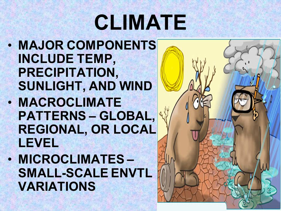 CLIMATE MAJOR COMPONENTS INCLUDE TEMP, PRECIPITATION, SUNLIGHT, AND WIND MACROCLIMATE PATTERNS – GLOBAL, REGIONAL, OR LOCAL LEVEL MICROCLIMATES – SMAL