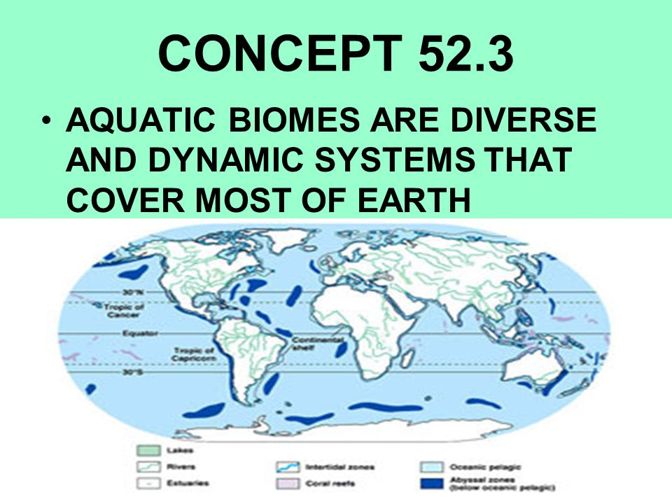 CONCEPT 52.3 AQUATIC BIOMES ARE DIVERSE AND DYNAMIC SYSTEMS THAT COVER MOST OF EARTH