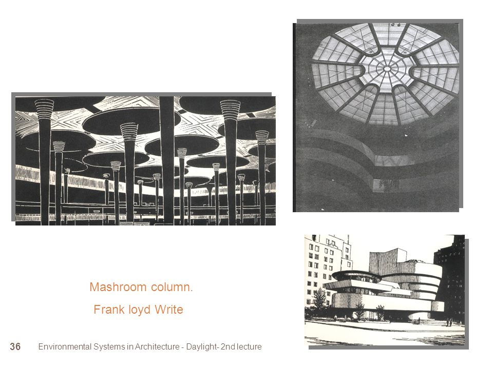 Environmental Systems in Architecture - Daylight- 2nd lecture 36 Mashroom column. Frank loyd Write