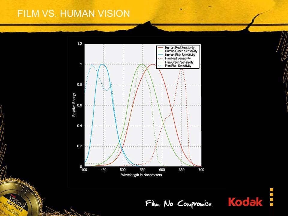 FILM VS. HUMAN VISION