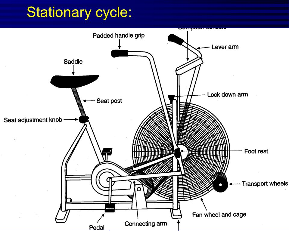 Stationary cycle: