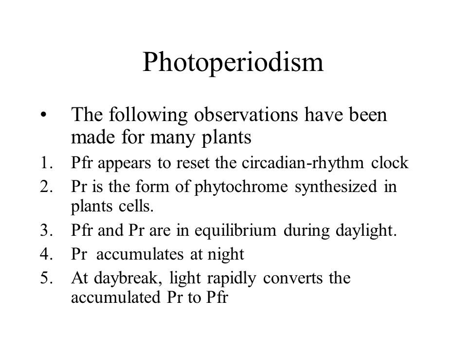 Photoperiodism The following observations have been made for many plants 1.Pfr appears to reset the circadian-rhythm clock 2.Pr is the form of phytochrome synthesized in plants cells.