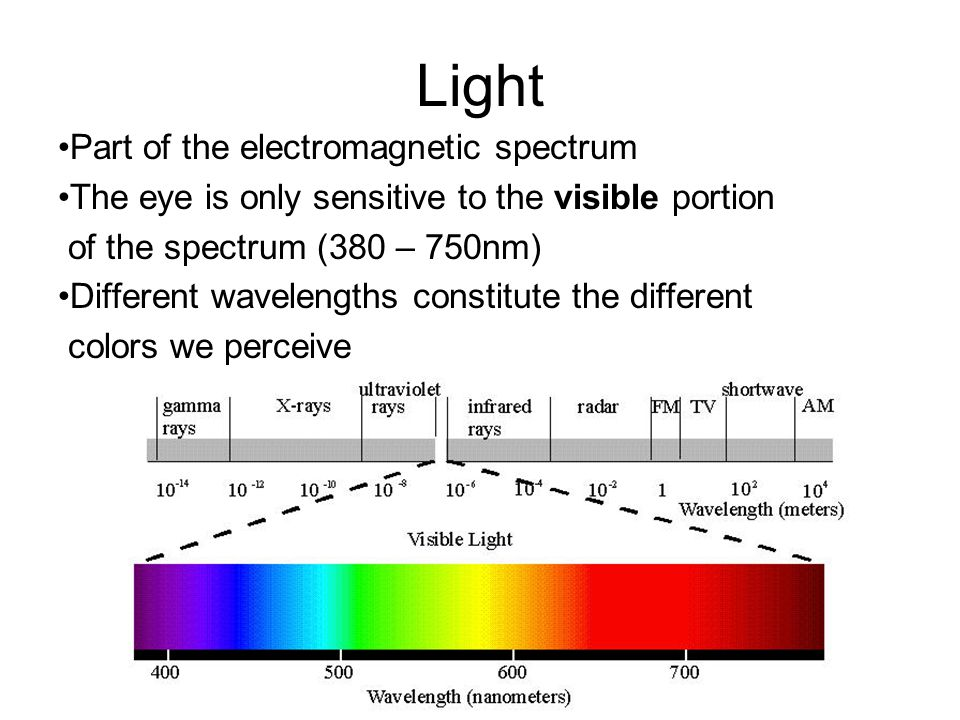Light Part of the electromagnetic spectrum The eye is only sensitive to the visible portion of the spectrum (380 – 750nm) Different wavelengths consti