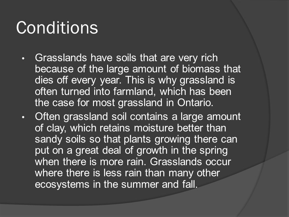 Conditions Grasslands have soils that are very rich because of the large amount of biomass that dies off every year.