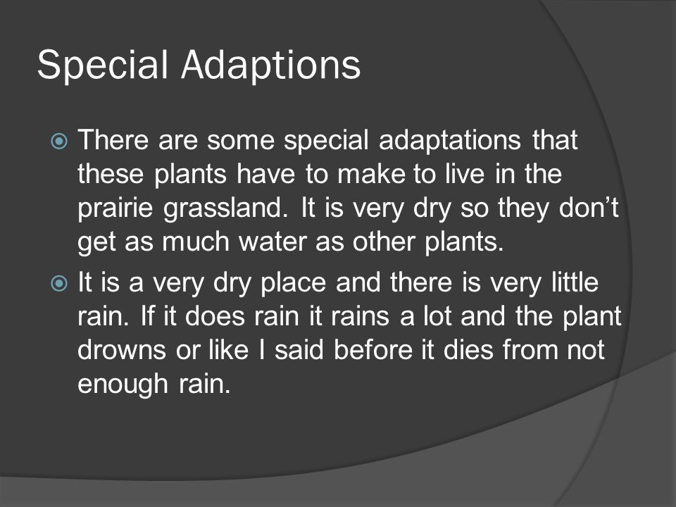 Special Adaptions  There are some special adaptations that these plants have to make to live in the prairie grassland.