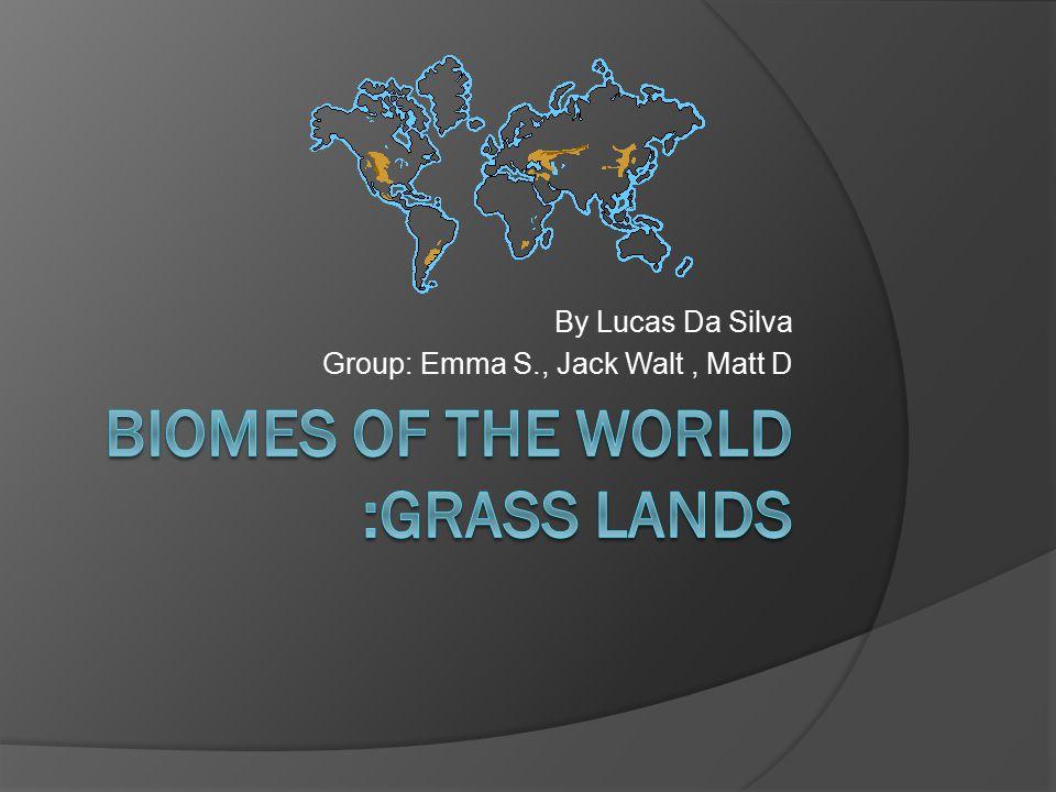 By Lucas Da Silva Group: Emma S., Jack Walt, Matt D